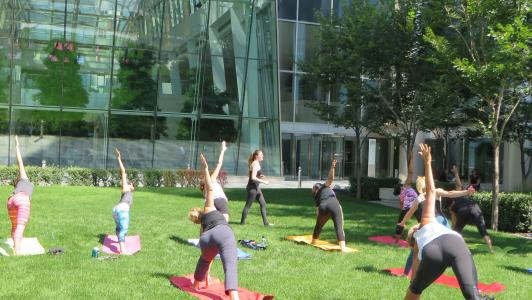 Courtyard yoga July 31st 2015 15