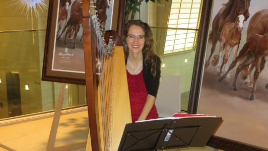 December.9.2015 Christmas Harpist 13